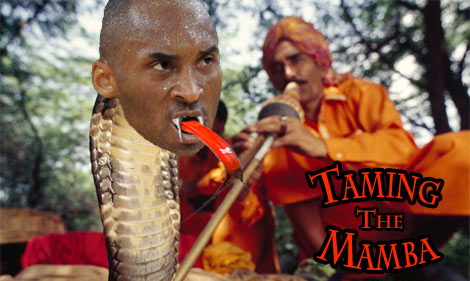 Taming the Mamba